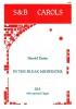 Darke Harold : In the Bleak Midwinter. SSA