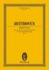 VIOLON Trio à cordes : Livres de partitions de musique