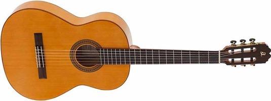 Triana Flamenco Guitar: Acoustic Guitar
