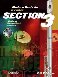 Erik Veldkamp: Section 3: Flute Ensemble: Instrumental Work