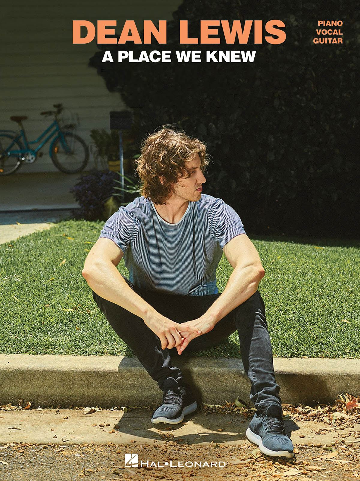 Dean Lewis: Dean Lewis - A Place We Know: Piano  Vocal and Guitar: Instrumental