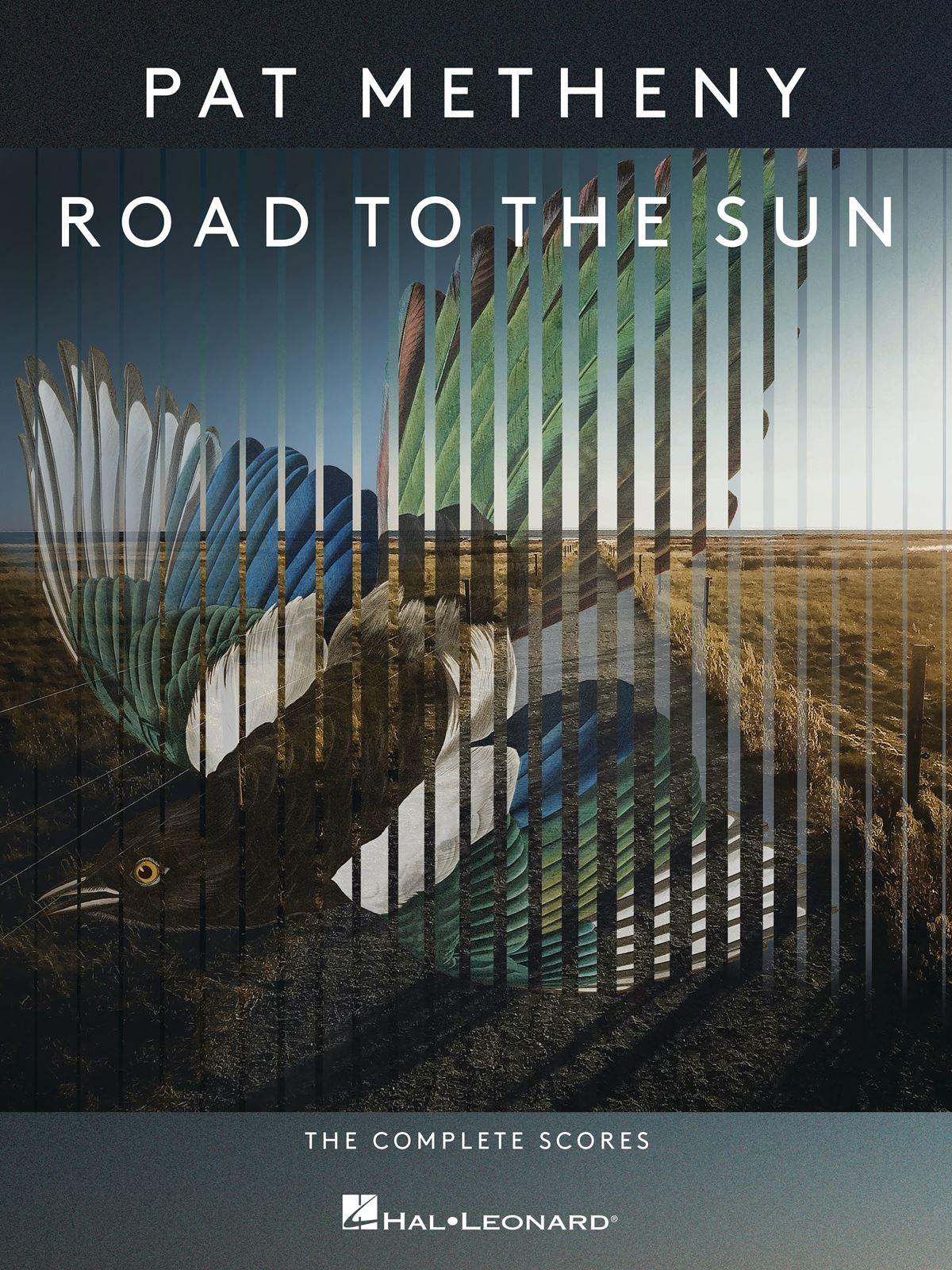 Pat Metheny: Pat Metheny - Road to the Sun: Guitar Solo: Instrumental Album