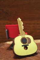 Guitar Vinyl Key Caps Set Of 2 Assorted: Decoration