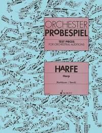Ruth Konhäuser Adam Storck: Orchester Probespiel Harfe: Harp