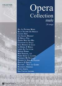 Opera Collection Male: Piano  Vocal  Guitar: Mixed Songbook
