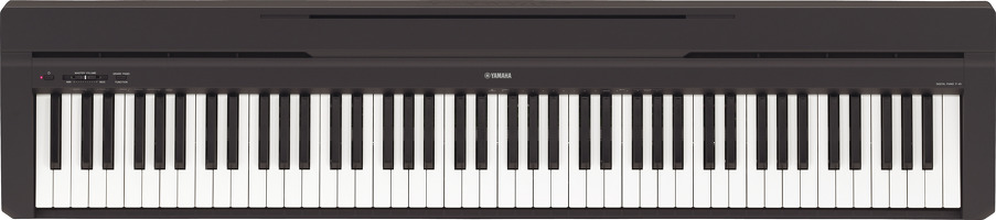 P-45 Weighted Digital Piano Black: Piano