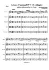 Arioso - Cantates BWV 156 (Adagio)