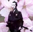 Traditional: Cherry blossom