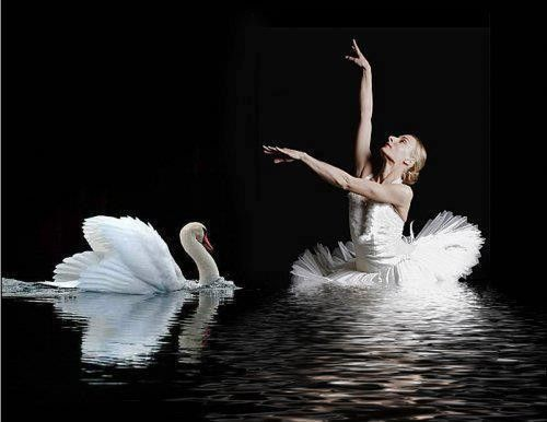 Tchaikovsky, Piotr Ilitch: Swan Lake – 1st Theme
