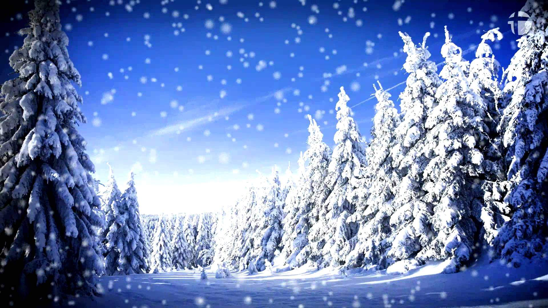Traditional: Snow Falls Soft in the Night