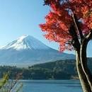 Christian, Faivre: Katashima