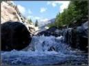 Daneels, Pierre-Paul: La rivière