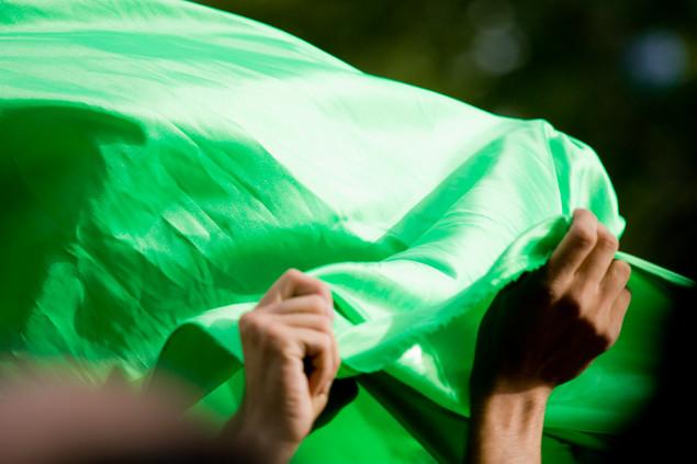 Saboohi,Ehsan: GREEN  IRAN