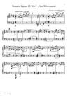 Sonata No. 5 (1st Movement: Allegro molto e con brio)