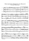 Trio fragment in G