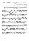 Lute Suite BWV 997: 5. Double