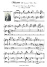 Musette. Transcribed for Concert organ solo