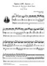 SINFONIA dalla Cantata n.29. Trascrizione da Concerto per Grande Organo