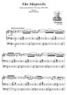 THE SHEPHERDS.  Trascrizione da Concerto per Grande Organo