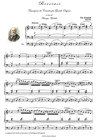 BERCEUSE. Trascrizione da Concerto per Grande Organo