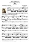 """""""O MIO BABBINO CARO"""". ( """"O my believed father"""") Transcribed for Concert Organ solo"""