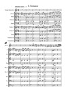 Concertino No, 1 for Horn and Chamber Orchestra - II. Romanze