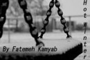 fatemeh_kamyab: Hot Winter