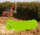 Sidebotham, Elizabeth: Caterpillar Tracks