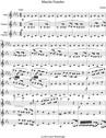 Marche Funebre from Piano Sonata No 2
