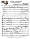"""Sinfonia: """"Gott soll allein mein Herze haben"""" for Horn & Strings"""