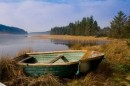 """Traditionnel: """"The Skye Boat Song"""" for Harp & Flutes"""