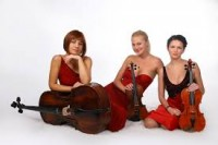 Bach, Johann Sebastian: Sonata in G Major for String Trio