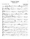 Caprice-Valse Wedding Cake pour piano + ensemble de clarinettes