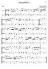 Sonata Ottava