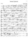 Sonata Undecima