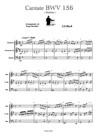 Cantate BWV 156