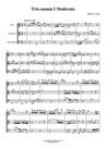 Trio sonata in A minor for flute, clarinet in C & basso continuo