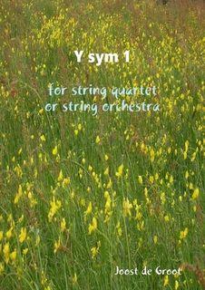 de Groot, Joost: Y sym 1 for string quartet or string orchestra